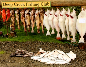 fishing in Alaska, Alaska fish, Alaskan seafood