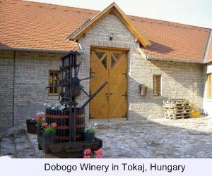 Tokaji, Dobogo Winery, Dobogo, Furmint, Tojaki
