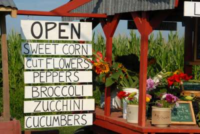 localvore, vegetable stand, local food